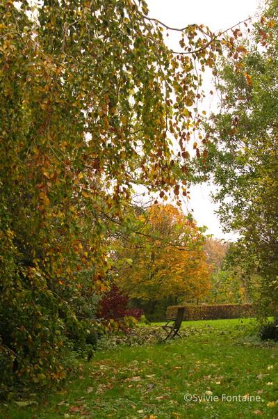 D coration jardin romantique habbo saint denis 3723 saint denis jardin - Jardin romantique habbo toulon ...