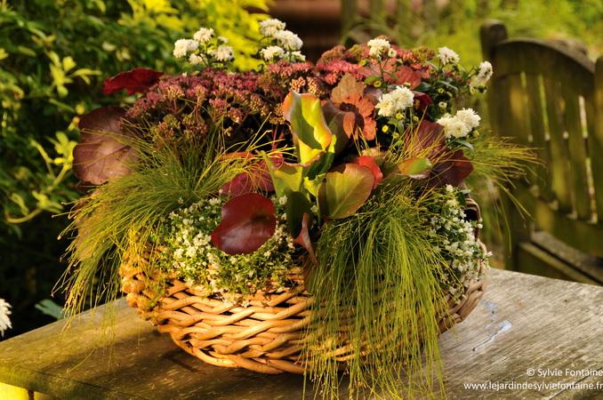 Des jardini res d 39 automne compos es avec des plantes vivaces - Plantes fleuries d automne ...