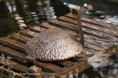 creation-ceramique-tortue-au-jardin