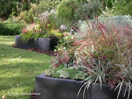 Id e terrasse et jardin d 39 hiver for Plante terrasse hiver