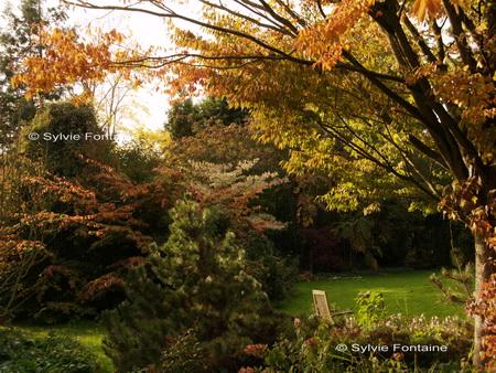 Ballade d 39 automne for Au jardin de sylvie